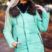 Женские куртки. Зима  500 -800 грн