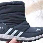 Зимние женские сапоги Adidas Primaloft